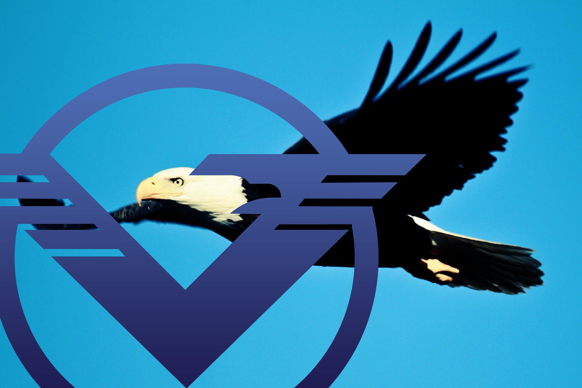 bald-eagle-1259676_2
