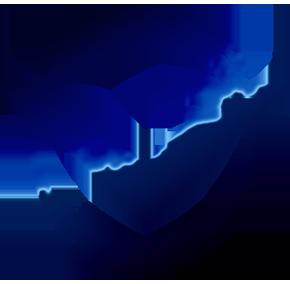 GGS Vigilanza